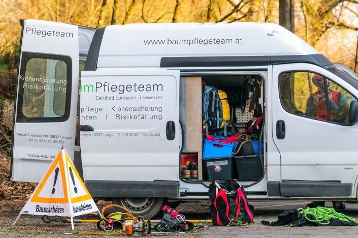 Baumpflege in Vorarlberg